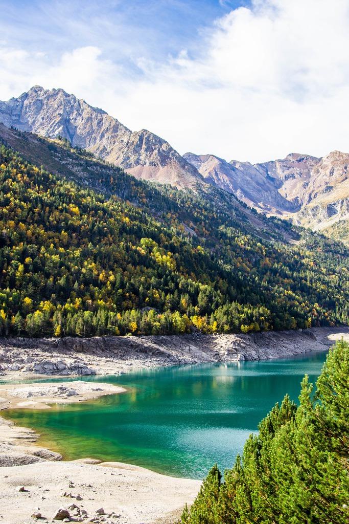 lac avec montagnes en fond et forêt