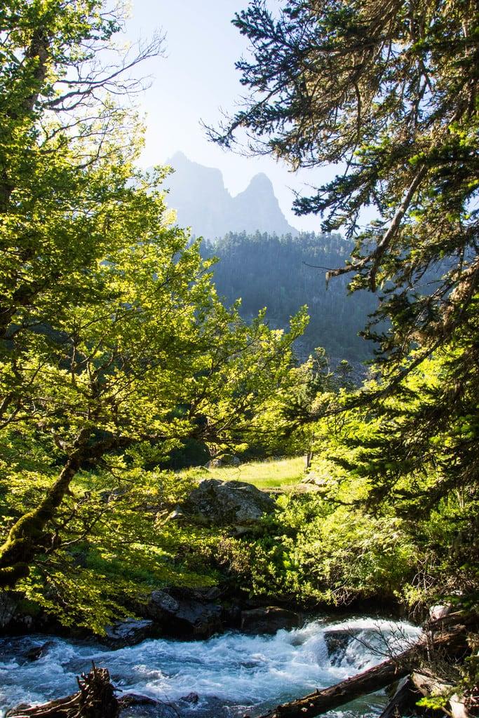 rivière avec pic du midi derrière arbres