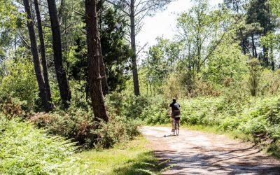 BONNE ADRESSE | CAMPING HUTTOPIA LANDES SUD : TOP 3 ACTIVITÉS PLEIN AIR