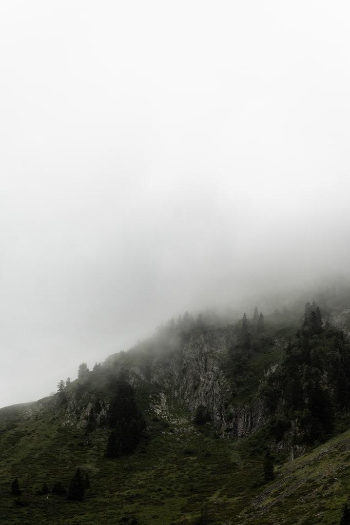 brume montagne