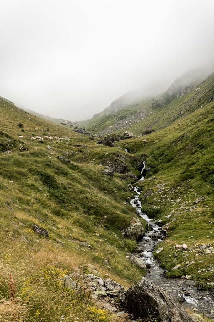 ruisseau montagne