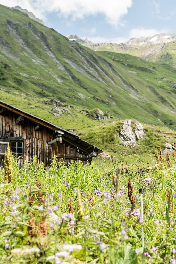 cabane en bois montagne