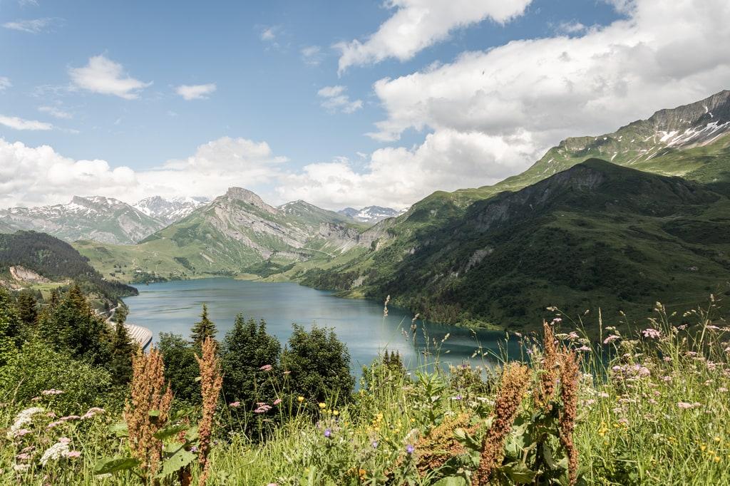 lac de montagne avec fleurs