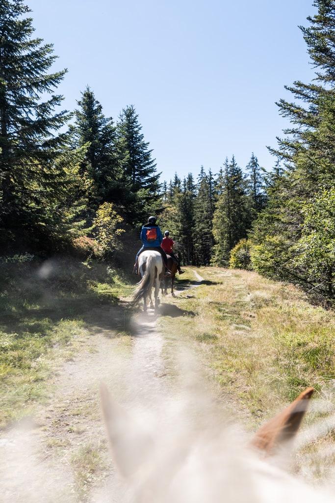 sentier cheval randonnée