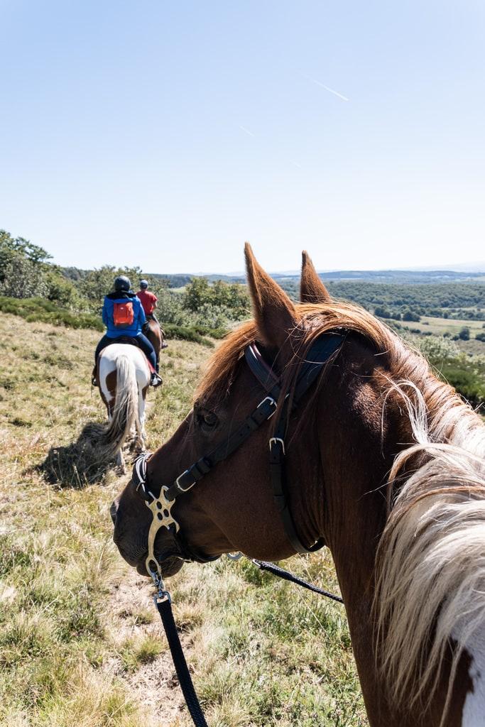 cheval randonnée