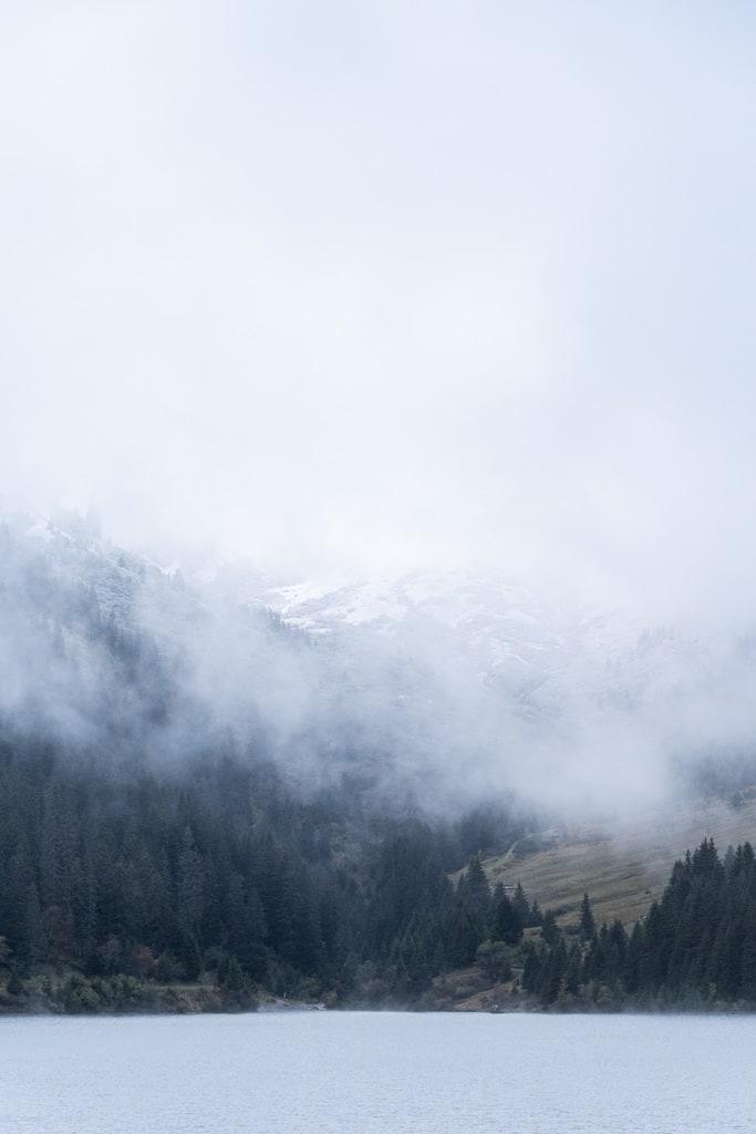 brume sur lac