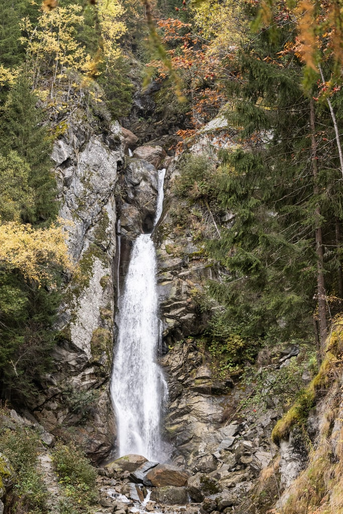 cascade foret