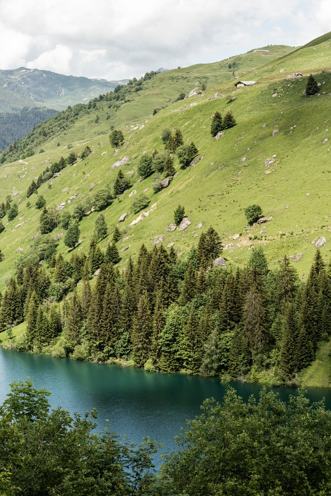 lac Roselend foret