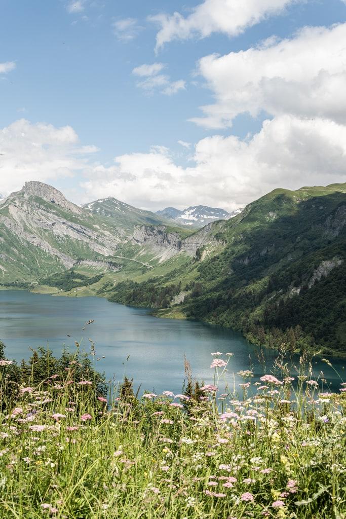 lac Roselend fleurs