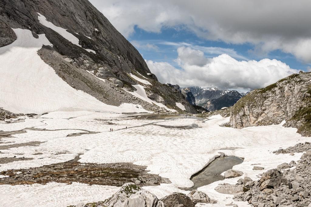 lac vache neige