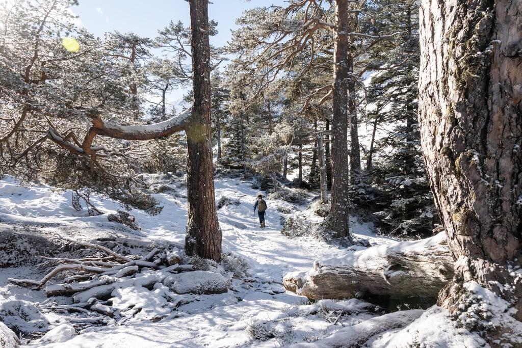 randonneur sentier neige