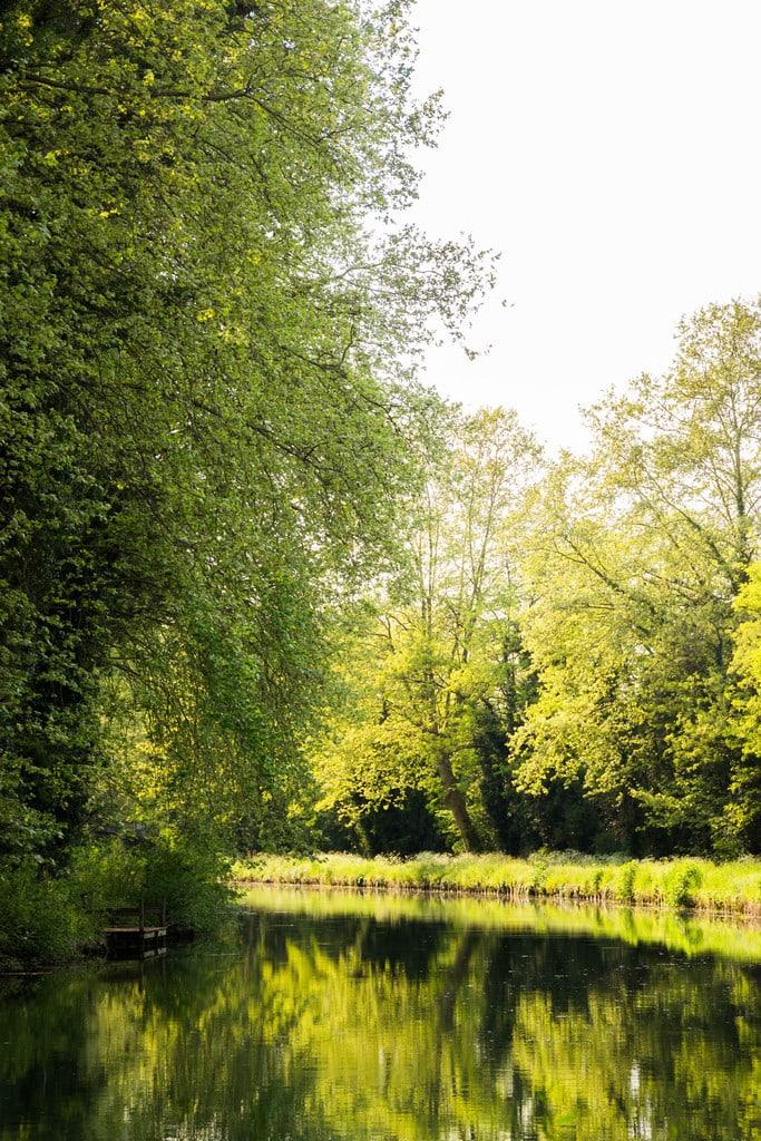 canal golden light