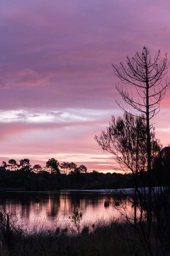 lac lever de soleil rose
