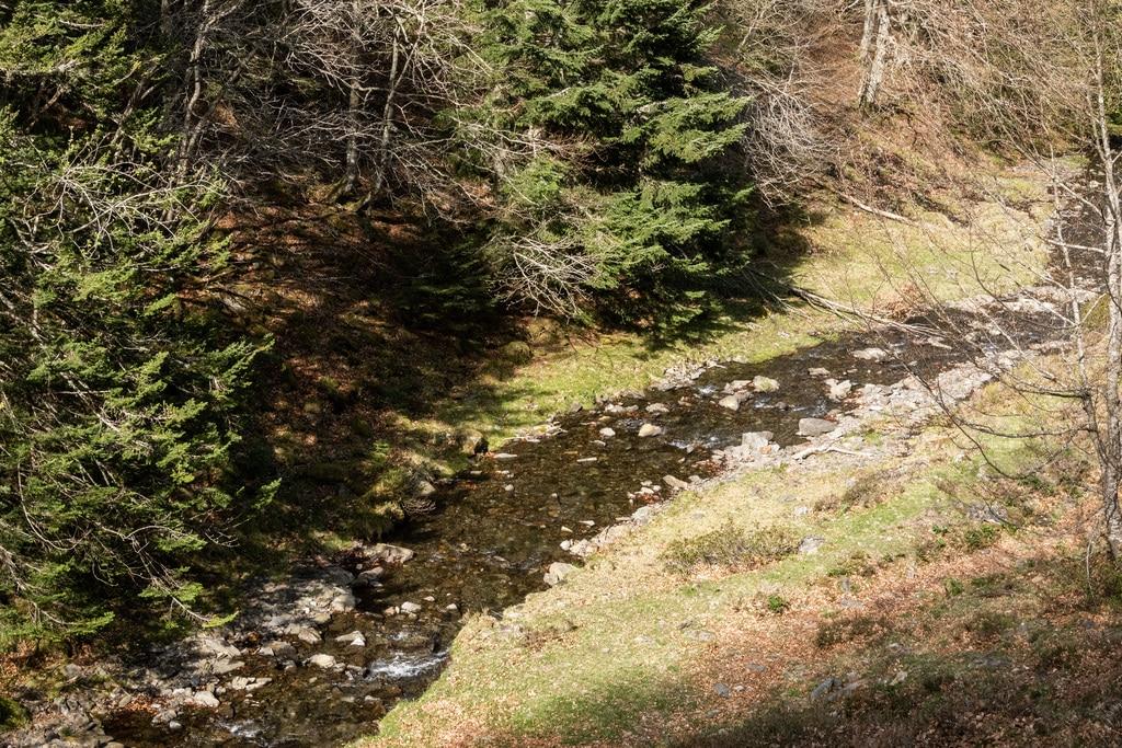 ruisseau contre bas