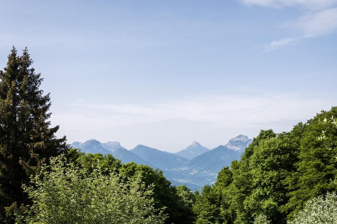 pinéa panorama