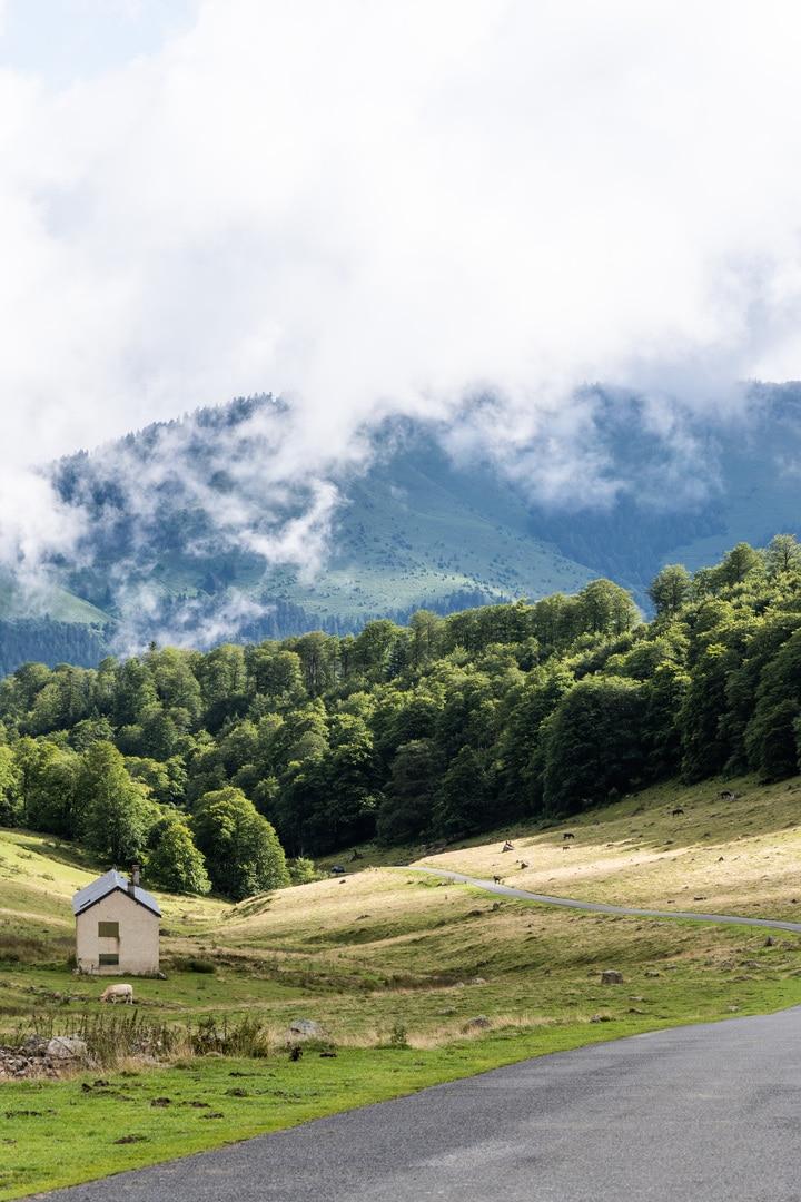 cabane en bord de route